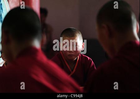 Monks praying in Shankh monastery (khiid), Mongolia - Stock Photo
