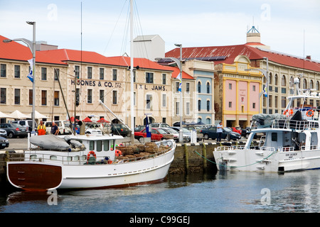 Fishing boats at Victoria Dock, with historic Hunter Street in background. Sullivans Cove, Hobart, Tasmania, Australia - Stock Photo