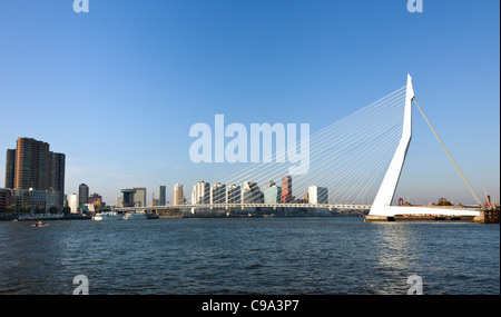 Skyline of Rotterdam with Erasmus bridge - Stock Photo