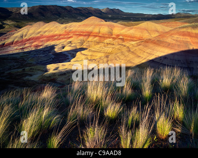 Grass and Painted Hills. John Day Fossil Beds National Monument. Oregon - Stock Photo