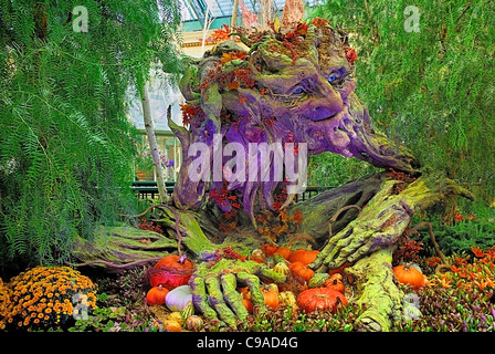 USA, Nevada, Las Vegas, The Strip, colourful display in the botanical gardens of the Bellagio hotel. - Stock Photo