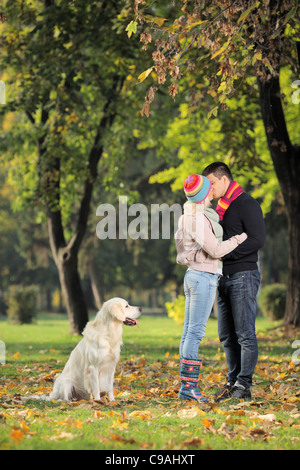 Boyfriend and girlfriend kissing in the park and a labrador retreiver dog - Stock Photo