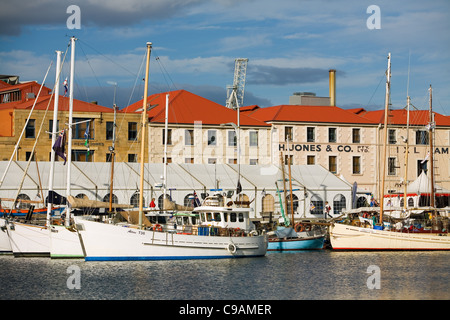 Fishing boats in Victoria Dock, with colonial architecture of Hunter Street in background.  Hobart, Tasmania, Australia - Stock Photo