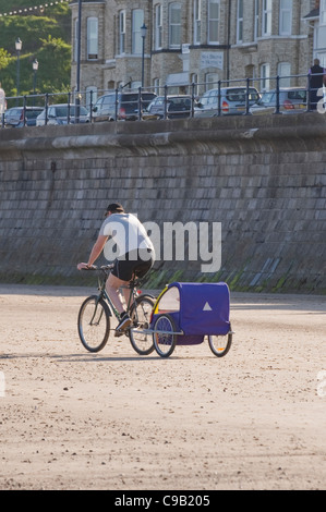 Man (shorts & t-shirt) on bike, cycling on sunny sandy seaside beach pulling bike trailer for child by sea wall - Stock Photo