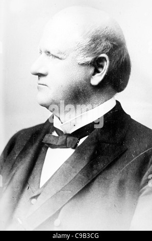 John Marshall Harlan, Kentucky lawyer and politician who served as an associate justice on the Supreme Court. - Stock Photo