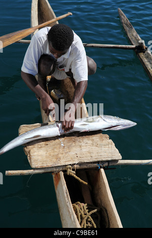 A malagasy fisherman cuts a big fish in two over a wood board in his slim outrigger canoe off Mamoko island, Madagascar - Stock Photo