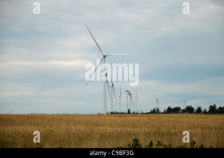 Windmills rotate on a ridge in Prince Edward Island, Canada. - Stock Photo