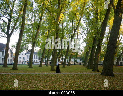 A Benedictine sister walks across the green of the walled 13th century Begijnhof or Béguinage, in Bruges, Belgium. - Stock Photo