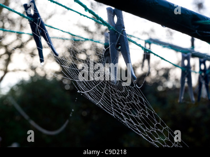 A garden rotary clothes line covered in dewy spiders web - Stock Photo
