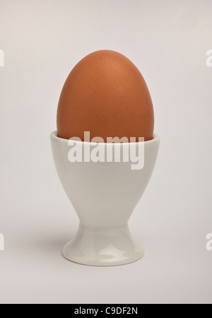 Brown egg in eggcup - Stock Photo
