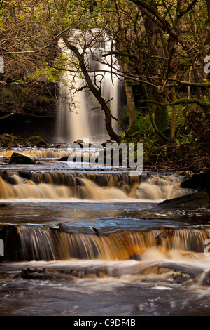 Gibson's Cave and Summerhill Falls, Bowlees Nature Reserve, Teesdale, County Durham - Stock Photo