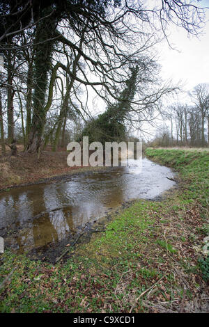 The River Glen in South Lincolnshire showing low water levels due to the drought. 29 Feb, 2012. - Stock Photo