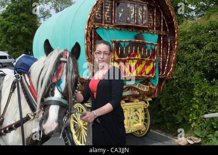 Victoria Lee with Bow Top decorated Carriage and Cob horse in Kirkby Lonsdale at the assembly point  for the Appleby - Stock Photo