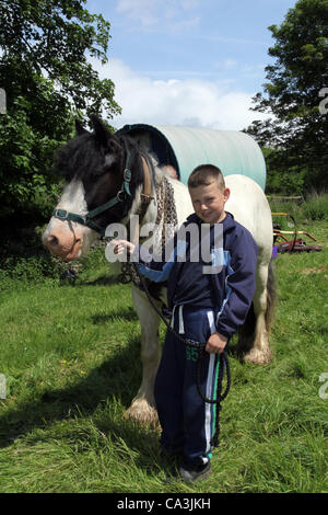 1st June 2012: Jack Livesey (11 years old) with Cob horse and Bow Top Carriage in Kirkby Lonsdale at the assembly - Stock Photo