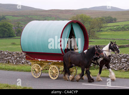 Tuesday 5th June, 2012: Gypsy travellers with Bow Top wagon en-route to Fell End, Sedbergh. A traveller attending - Stock Photo