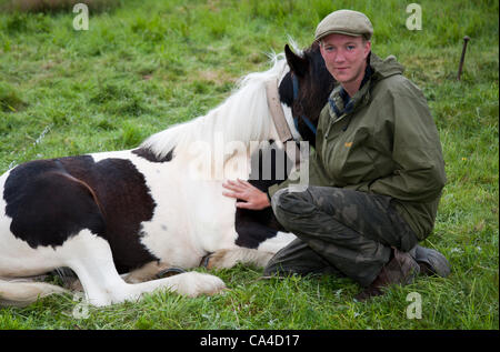 Tuesday 5th June, 2012: Dominic Baskeyfield with horses en-route to Fell End, Sedbergh. A traveller attending the - Stock Photo