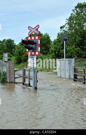 Saturday 9th June 2012. Flooded level crossing on the Vale of Rheidol narrow gauge railway at Llanbadarn Fawr, near - Stock Photo