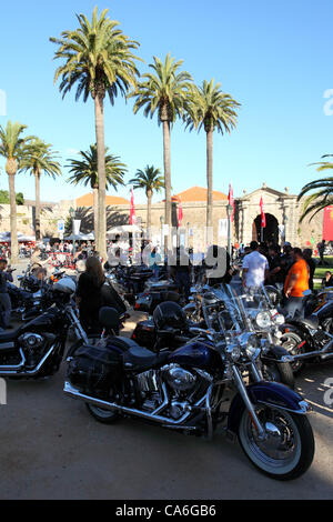 Harley-Davidson motorbikes parked at the Harley-Davidson Owners Group Rally 2012 in Cascais, Portugal. The event - Stock Photo