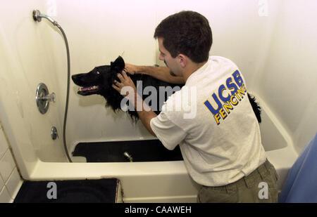 Dog wash station stock photo 113404378 alamy 1125 am kevin ryan of san ramon uses the do it solutioingenieria Gallery