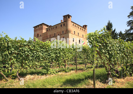 Old castle of Grinzane Cavour as seen through vineyards in Piedmont, northern Italy. - Stock Photo