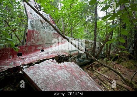 1957 DC-3 plane crash. Gustavus. Glacier Bay. Alaska. USA - Stock Photo