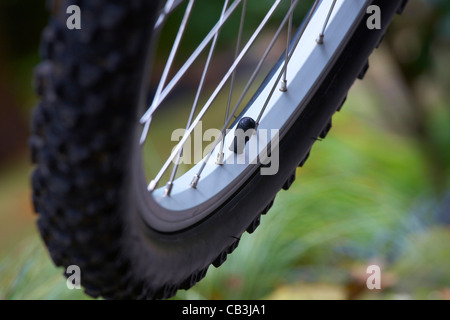 Close-up of bicycle wheel - Stock Photo