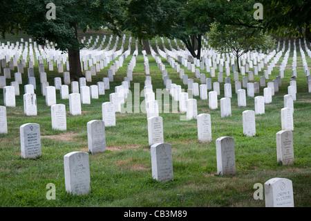 Arlington National Cemetery in Washington DC, United States of America USA - Stock Photo