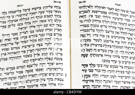 Hebrew text in holy book with tallit pray shawl fringes ...
