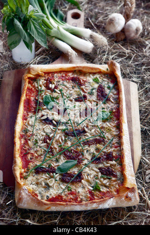 Pizza topped with cottage cheese and Gartenkraeuter  - Stock Photo