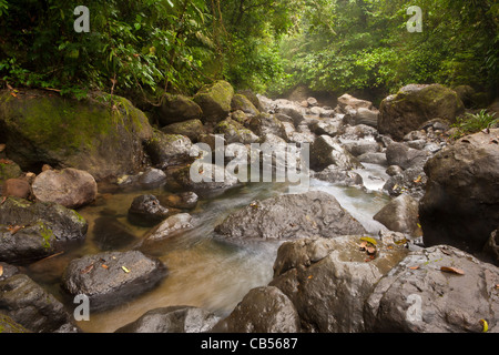 Rocky river beside the old overgrown Camino Real trail in Portobelo national park, Republic of Panama. - Stock Photo