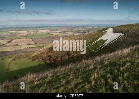 The Westbury White Horse - Stock Photo