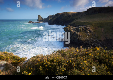 A North Cornwall coast scene near Bossiney - Stock Photo