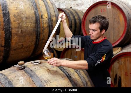 Winemaster tasting Brandy from Oak Barrels in the cellars of Cremisan Winery in Beit Jala near Bethlehem, Palestine - Stock Photo