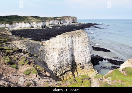 North over the chalk cliffs North Sea coast of Flamborough Head, East Yorkshire, England, UK. Low tide exposes shoreline - Stock Photo