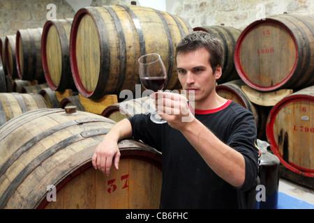Winemaster tasting red wine from Oak Barrels in the cellars of Cremisan Winery in Beit Jala near Bethlehem, Palestine - Stock Photo
