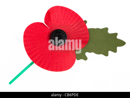 Remembrance day poppy on white cut out UK - Stock Photo