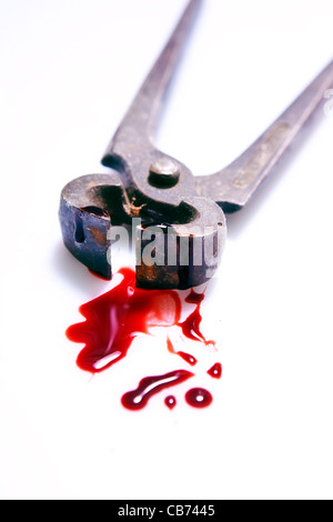 rusty pliers with blood - Stock Photo