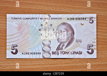 Reverse side of Turkish money (lira) - Stock Photo
