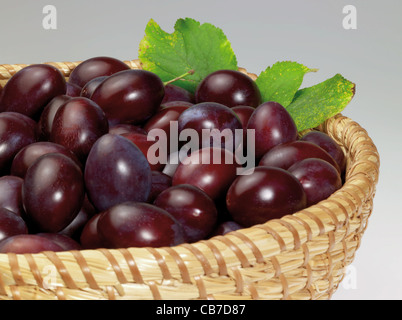 a basket with plums in grey back - Stock Photo