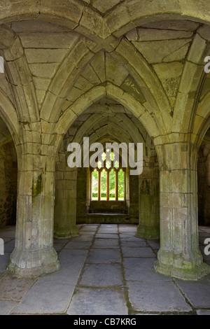 Vaulted Chapter House at Valle Crucis in Llantysilio, near Llangollen, Wales, Cymru, UK, United Kingdom, - Stock Photo