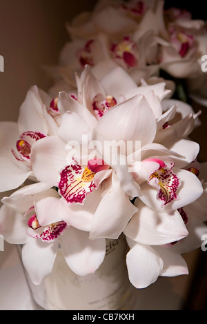 Wedding Bouquets Made Off White Orchids Prepared In Glasses