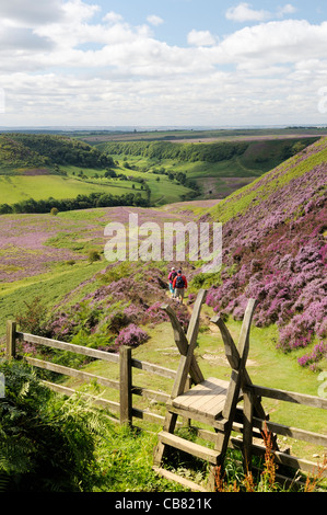 Stile, walkers and footpath south over heather covered Hole of Horcum moor land. North York Moors National Park, - Stock Photo
