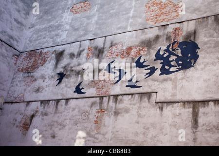 birds graffitti on the wall - Stock Photo