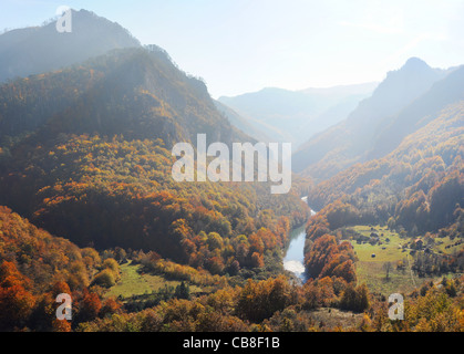 Tara River Gorge.Tara River Gorge - is the longest canyon in Montenegro and Europe - Stock Photo