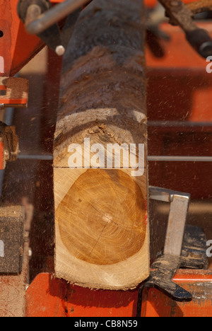 Woodworker sawing timber - Stock Photo