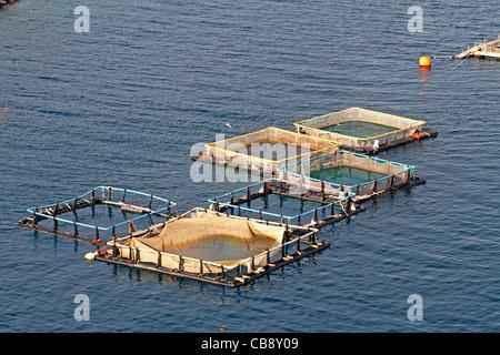 Aquacultrure, fish farms in Peloponesse, Greece - Stock Photo