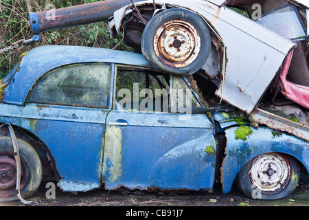 Old Morris Minor car with moss growing on it, in the scrap yard - Stock Photo