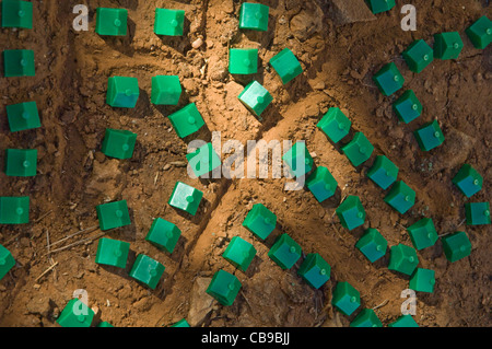 Plastic houses from a board game arranged in 'neighborhoods' in central Texas dirt by a child who's interest is - Stock Photo