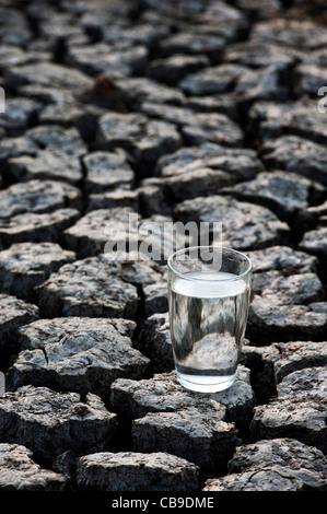 Glass of water on dry cracked earth. India - Stock Photo