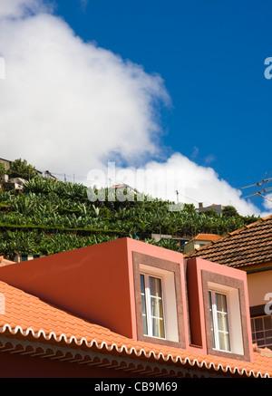Roof tops and Banana Terraces, Camara de Lobos, near Funchal, Madeira, Autumn 2011, travel, color, colour, sea, - Stock Photo
